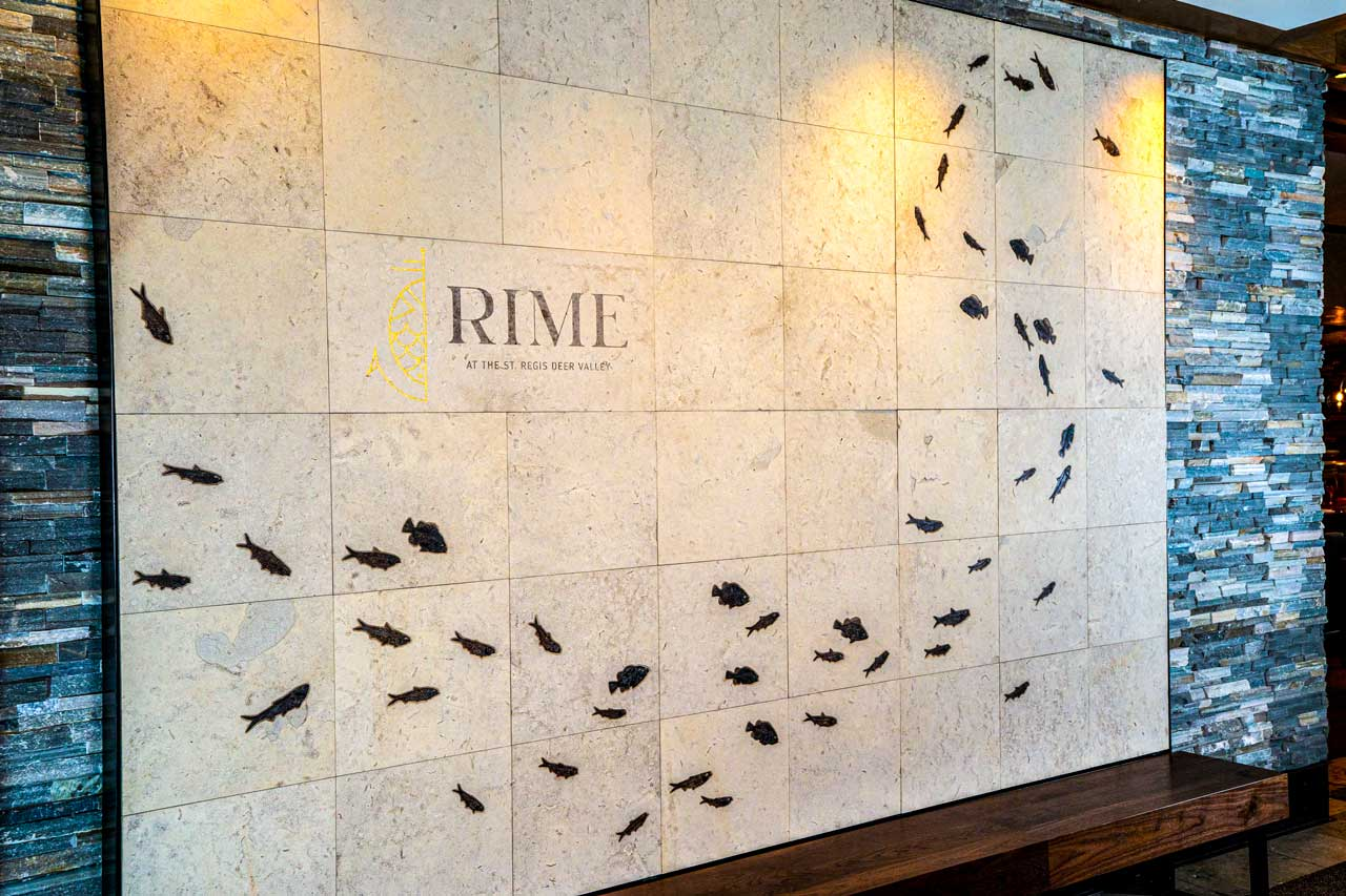 RIME Fossil Wall